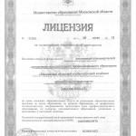 Лицензия (лист №1)