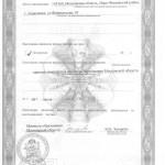 Лицензия (лист №2)
